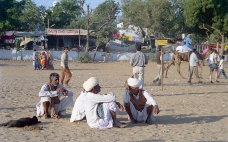 India_Rajasthan_Pushkar_CamelFair_27