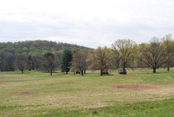 valley forge landscape