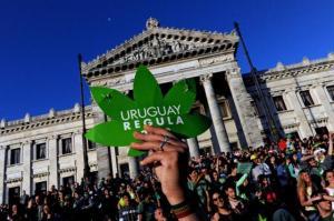 uruguay regula_img