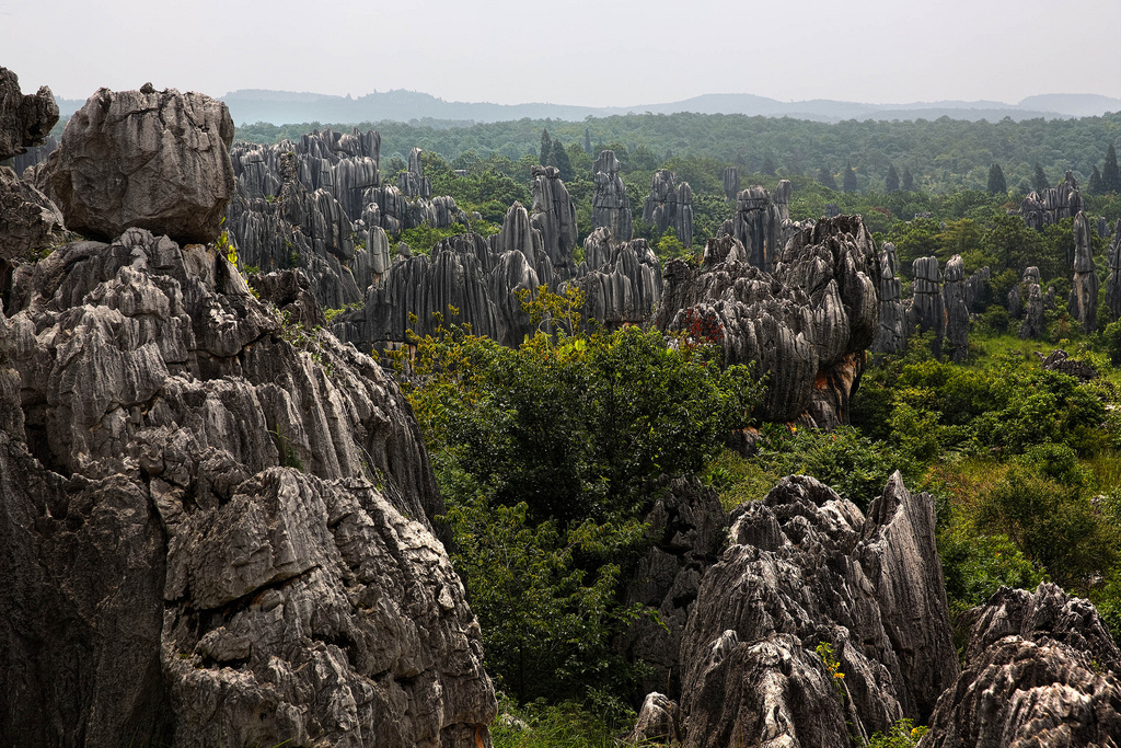Here you can see the big stone forest in China