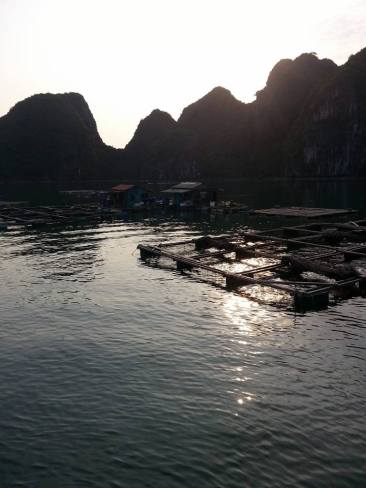 Lan Ha Bay 2017