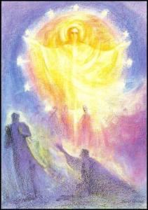 ascension veil