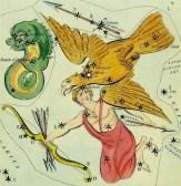 Aquila Delpineus