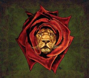 lion rose