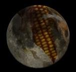 corn-moon