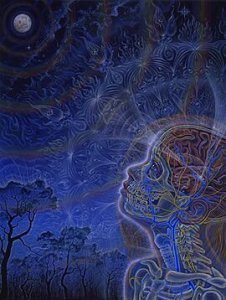 full moon alex grey