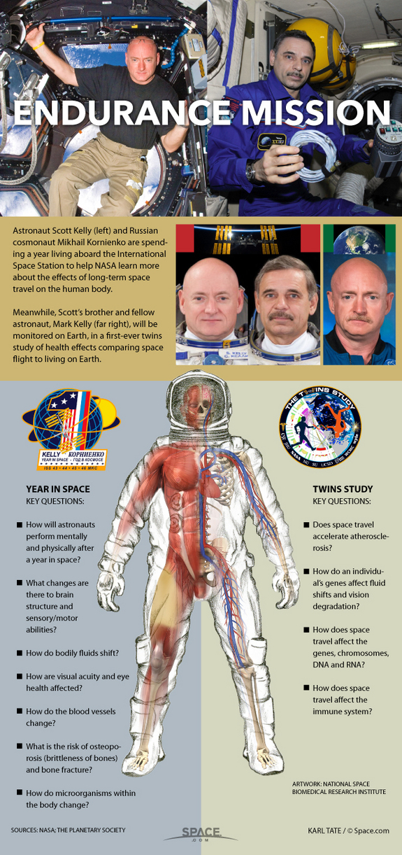 one-year-space-mission_infographic