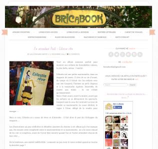 Décembre 2014 Célestin rêve http://www.bricabook.fr/2014/12/en-attendant-noel-celestin-reve/