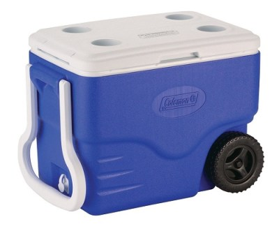 Best Camping Coolers Reviews – Buying Guide