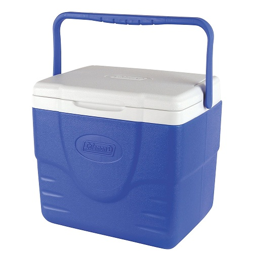 Best Camping Coolers Reviews