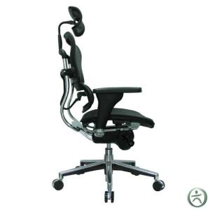 Ergohuman Chair Review