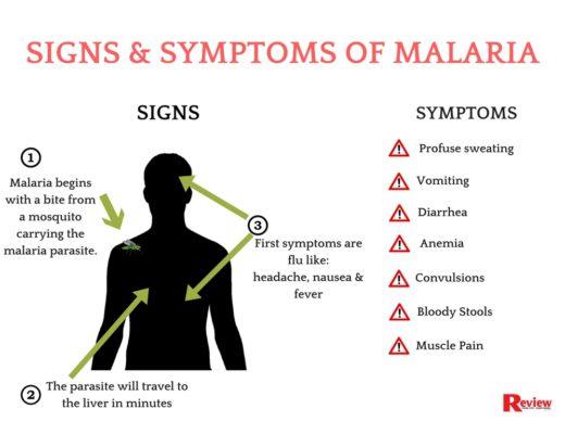 malaria symptoms pictures