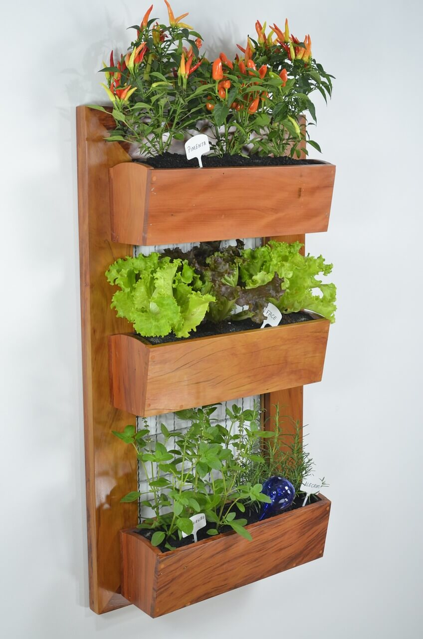Vertical Gardening: Grow More in Less Space & in Less Time