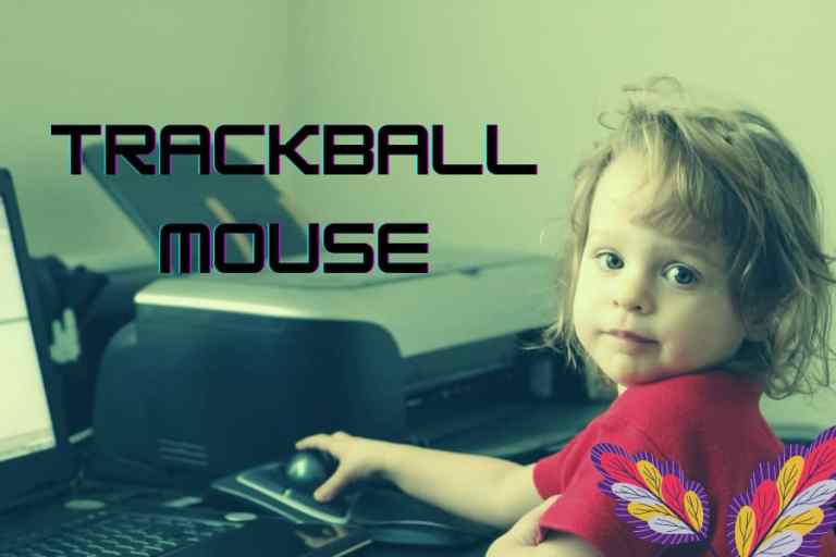 Best Trackball Mouse Review And Buying Guide