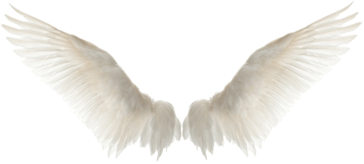 guardian-angel-personalized-system-wings