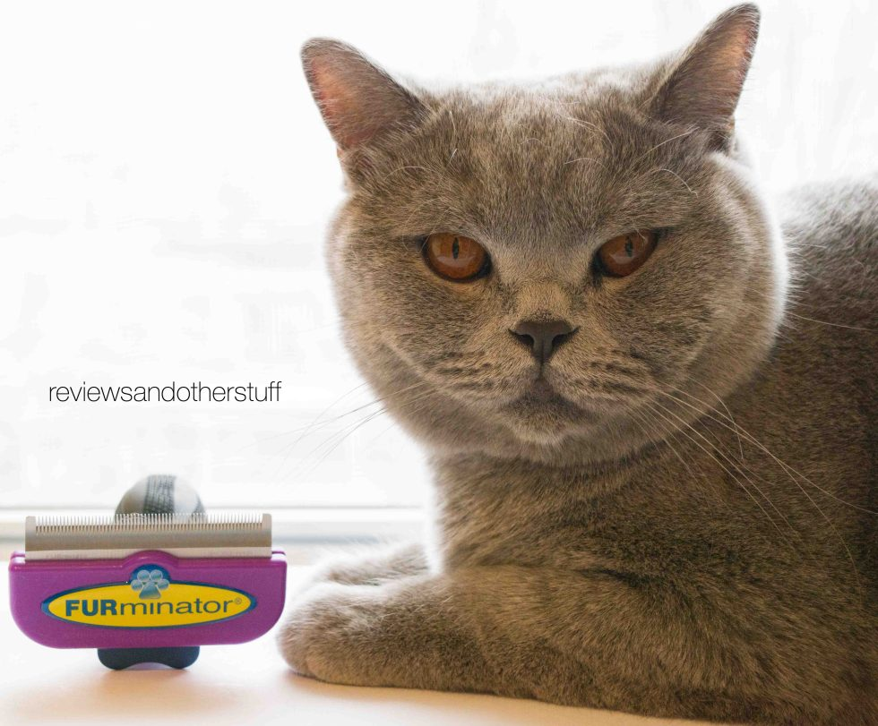 Cat furminator review