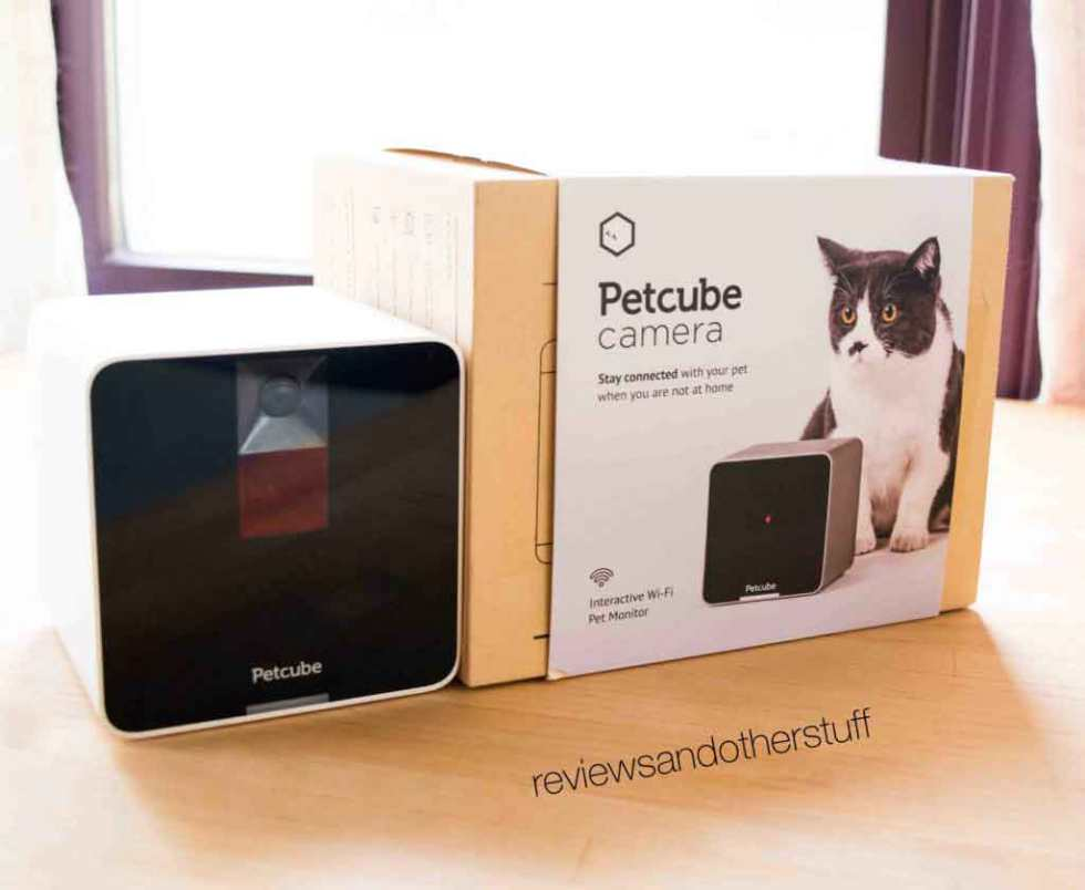 petcube review