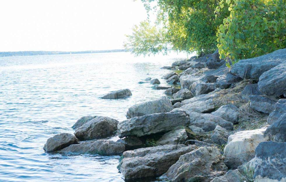 Lake Erie Review