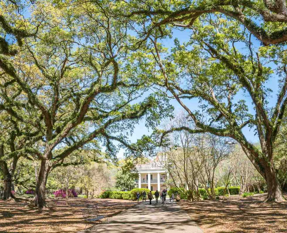 oak alley plantation new orleans