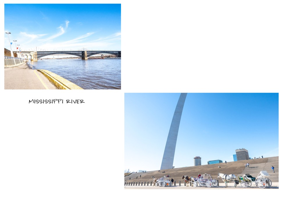 the gateway arch national park st. louis