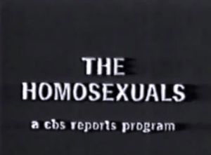 the homsexuals poster