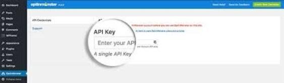 api key for optinmonster