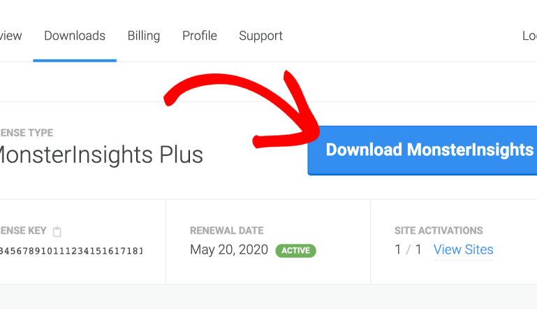 monsterinsights plugin for website tracking