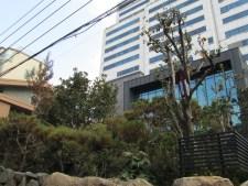 A skyscraper and a rock garden