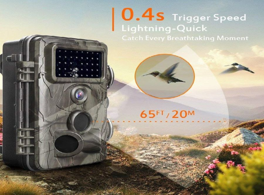 Gosira Trail Camera Review