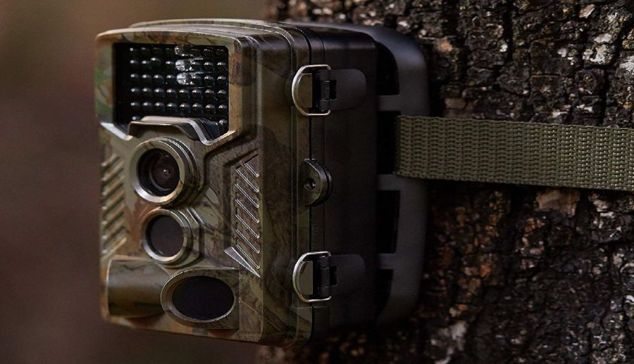 REXING Woodlens H1 HD 16MP Trail Camera Review