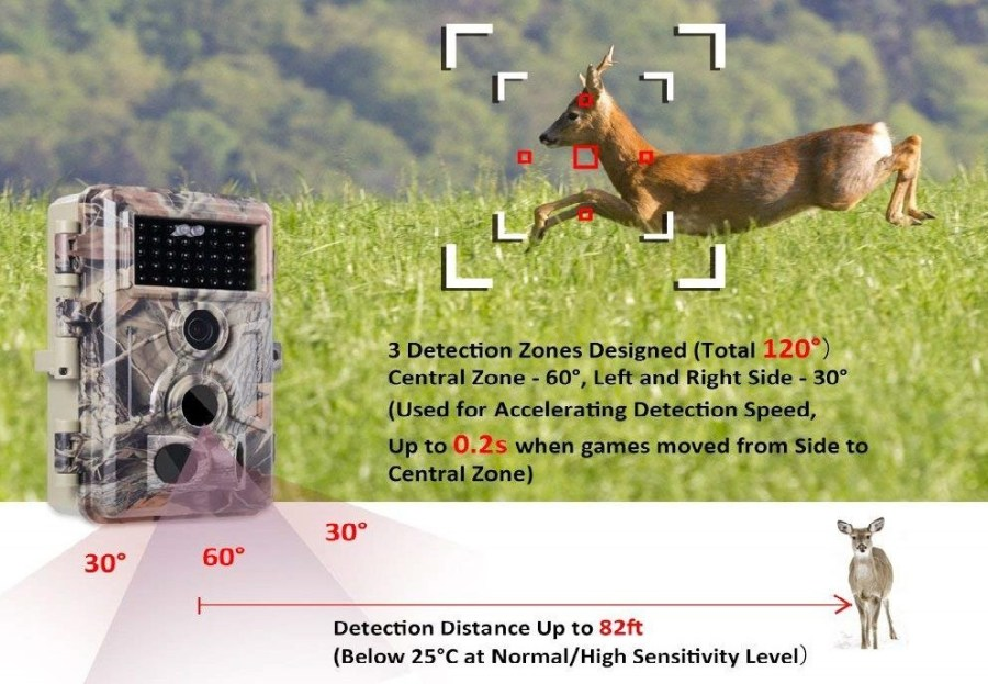 Best Trail Cam Buying Guide