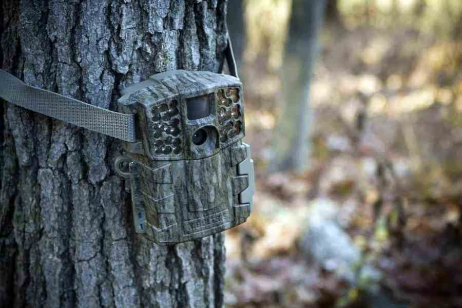 Apeman Trail Game Camera