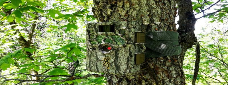 "Best Trail Camera Uses ""The Best Trail Camera Guide For The Users"