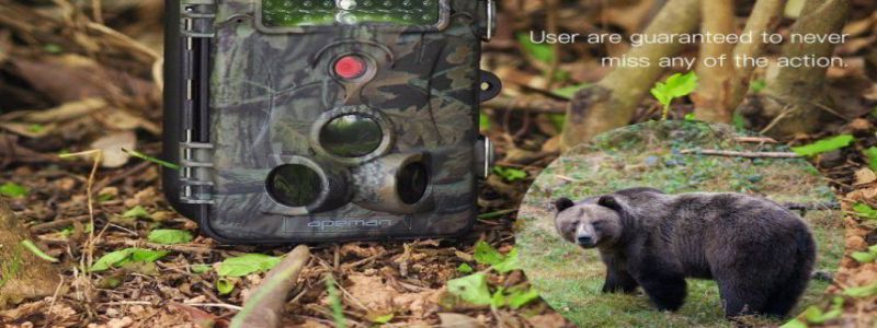 apeman hunting trail camera