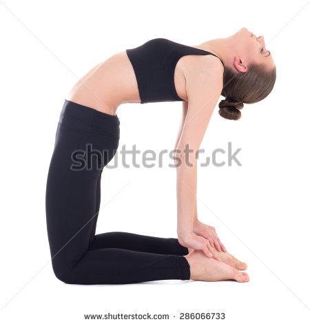 cat cow pose camel pose  reviews  diet  food  health tips