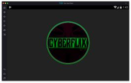 Cyberflix Image