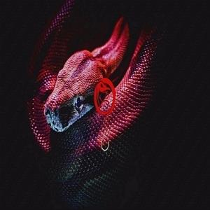 Venom IPTV Logo