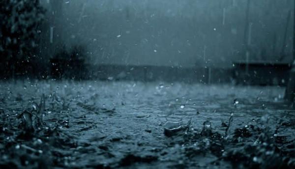 Rainfall. Image via the Herald.