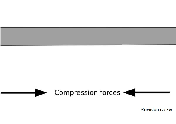 Compression forces act upon the crust.