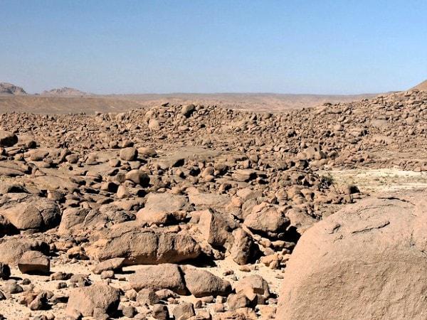 Reg desert. Image credit vitaminech.com