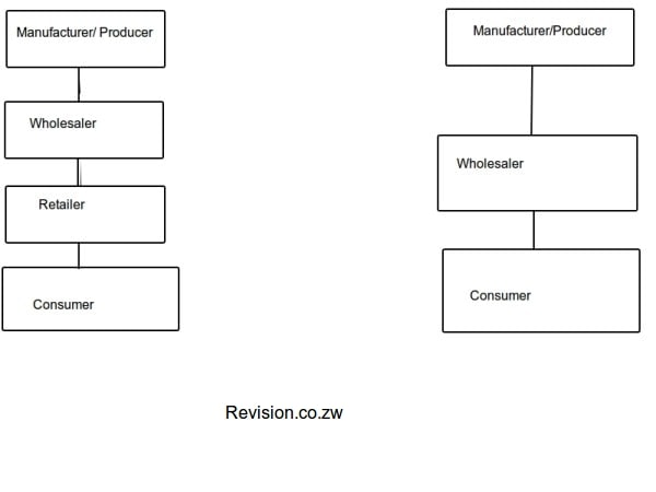 A chain of distribution for a wholesaler business.