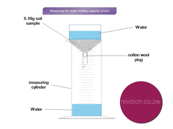 Testing the water holding capacity of soil
