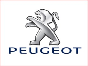 revisione della vostra auto Peugeot ad Olbia