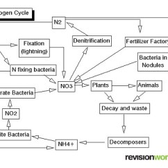 The Carbon Cycle Diagram Gcse Oil Burner Control Wiring And Nitrogen Revision Biology This Video Explains How Works