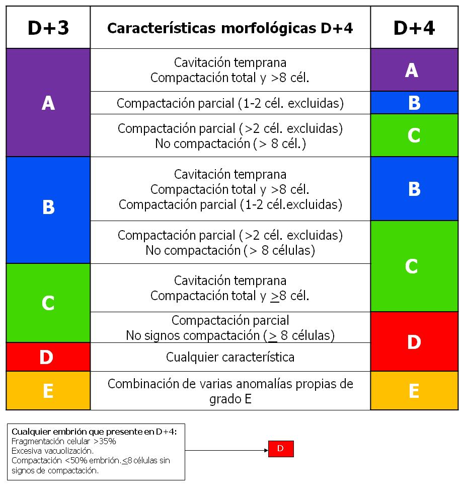 Tabla 2 FC