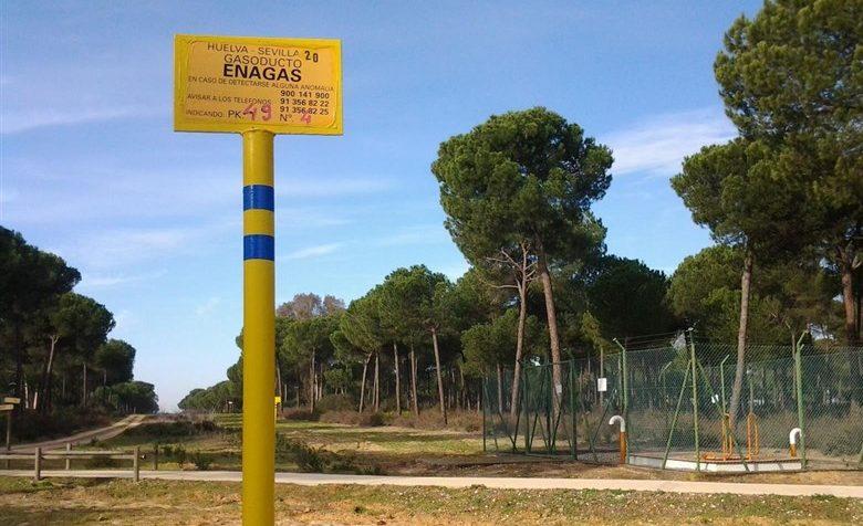 El Parlamento Europeo enviará una misión de investigación a Doñana este año