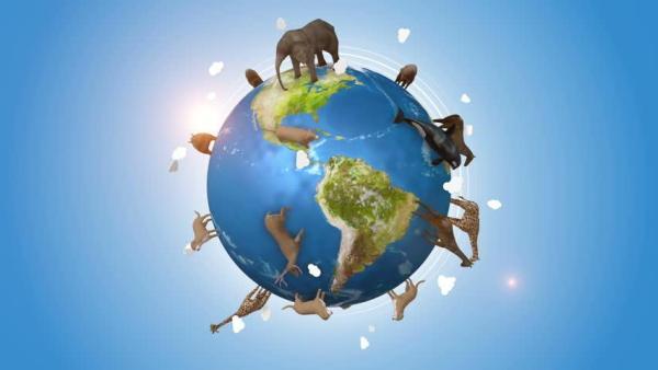 Día Mundial de la Tierra: proteger nuestras especies y la biodiversidad