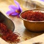 El Azafrán – Herbario