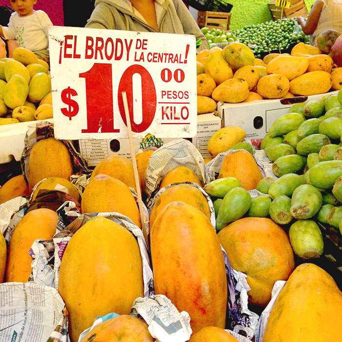Los Mercado, inspiración para Martha Chapa