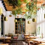 Mia Domenicca – Toda una vida en la cocina